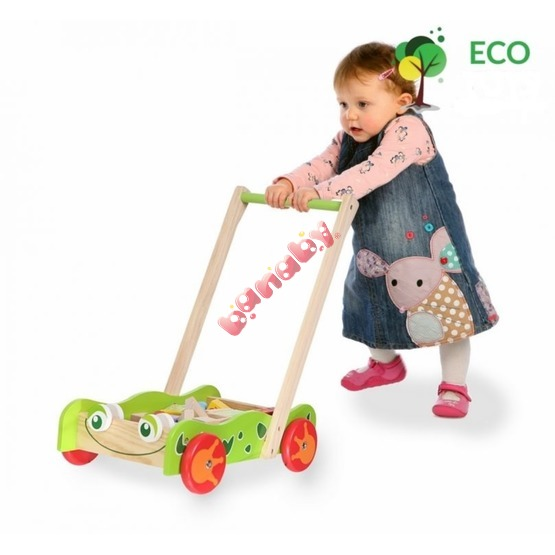 Wooden Baby Push Walker with Building Blocks