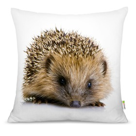 Pillow HEDGEHOG, Mint Kitten