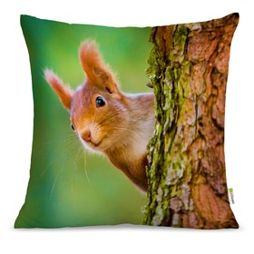 Pillow SQUIRREL 01, Mint Kitten